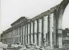 Palmyre dans le fonds André Robert de la Bbliothèque de Fels