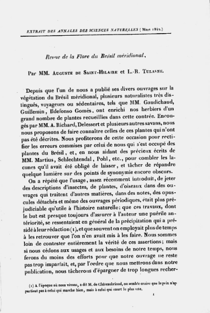 Revue de la Flore du Brésil mèridional  A. de Saint-Hilaire. 1842