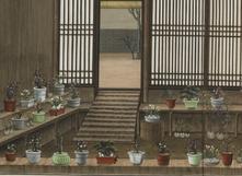 中国人的温室